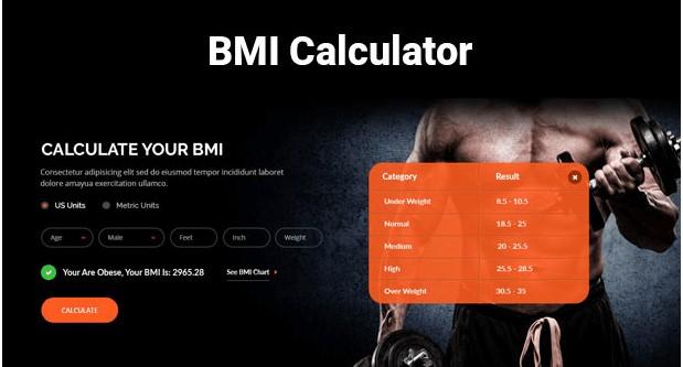 BMI Calculator feature