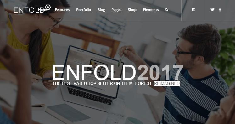 enfold 2017 demo