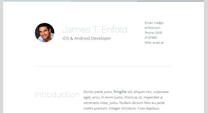 enfold resume demo