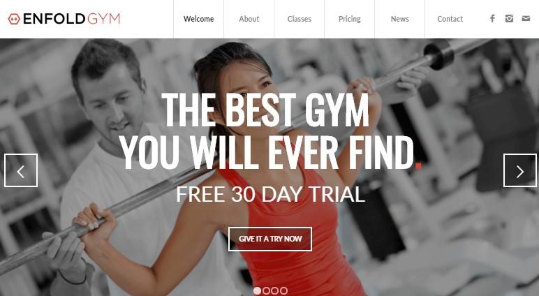gym enfold theme