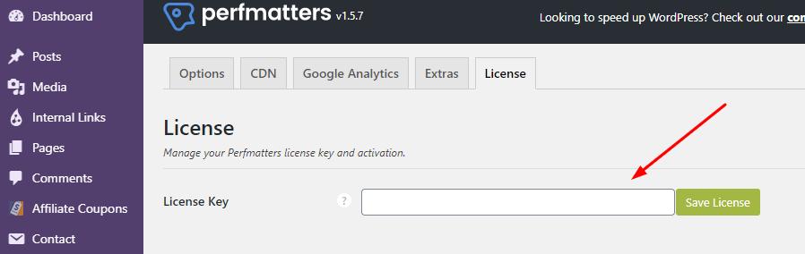 Perfmatters License