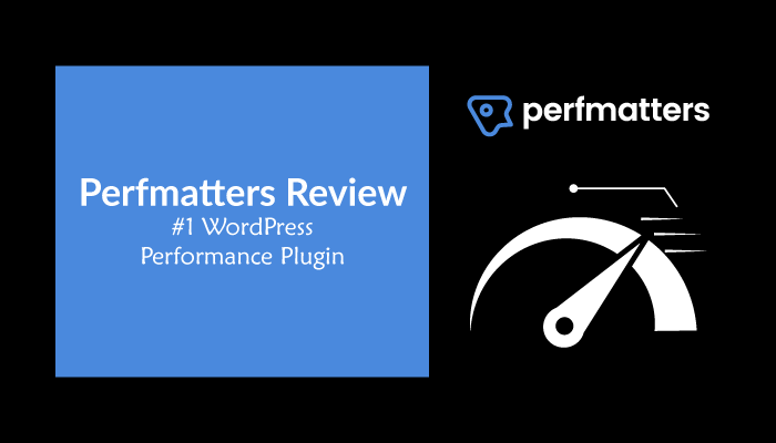 Perfmatters Review