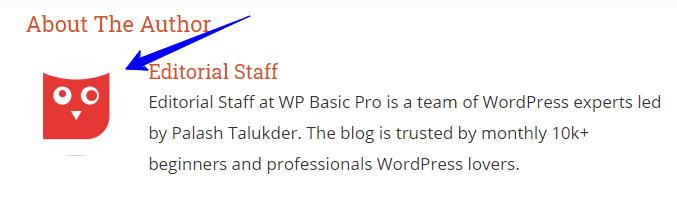 WPBasic Pro Author Profile Photo
