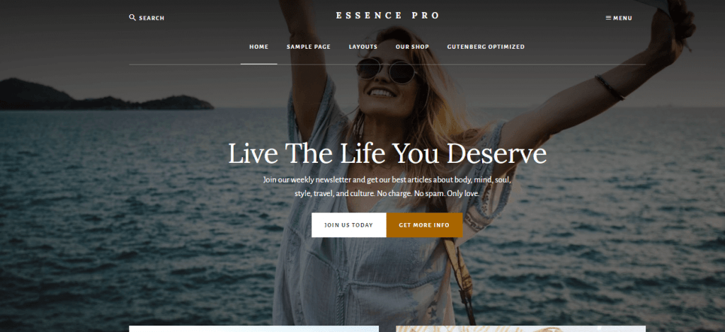 20 Best WordPress Themes For Blogs 2021 Reviewed 17
