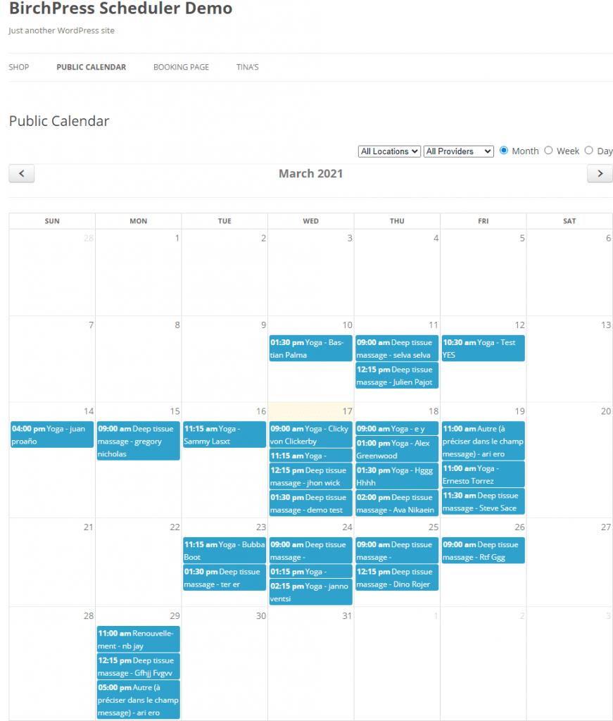 Public Calendar BirchPress Scheduler Demo