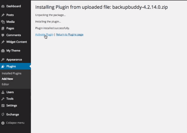 Install Backupbuddy
